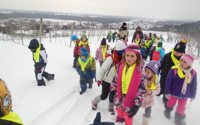 Zimske počitnice 2019